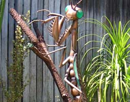Bronze Praying Mantis - This sculpture graces a beautiful California garden.  Ensconced among the plants, the bronze mantis perches on a budding branch, surveying the environment with green sea-glass eyes.
