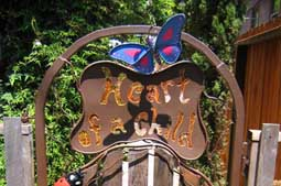 Heart of a Child gate - A small school for children in Berkeley needed a gateway to its hobbit grove playground to be suitably tantalizing.  The parents got together and commisioned this gate to integrate with the existing wooden fence.  Many re-used parts were used for the frame, the twigs and the critters. 3 feet W x 5 feet H