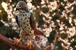 Red Tail Hawk - Life-size rendering of a Red Tail Hawk perched on a branch.  Photographs by KF. 2ft Tall