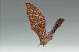 Flying Bat -  1.5 ft Long